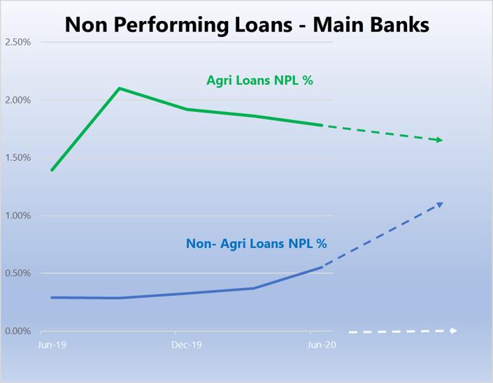 NPL- Main banks